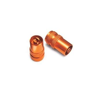 Picture of VALVE CAP SET (7771097605004)